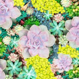 Кухонный фартук Краски лета